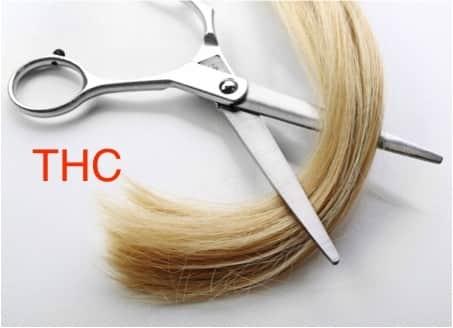Haaranalyse THC gerichtlich